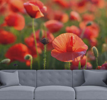 Bring some flowers home with this flower wall mural that shows a bunch of beautiful poppies growing on the meadow. High quality image!