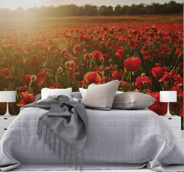 This flower photo wallpaper shows a field of beautiful poppies. It is perfect for bedrooms to create a warm living space.