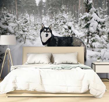 Hou je van winter, en is dit het meest favoriete seizoen? Dan hebben we dit prachtige winterbos en husky hond fotobehang met sneeuw voor jou!