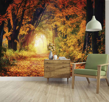 Autumnal path nature wall mural