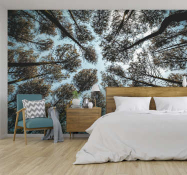 Feel as if you are lying on the forest floor, staring up at the trees and feeling relaxation. This is the perfect forest wall mural for your home!