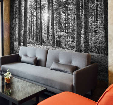 A serene forest scene in stunning black and white. Decorate your home in the most beautiful way possible with this forest wall mural.