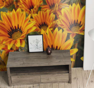 On this photo wallpaper of sunflowers you get an image of some sunflowers with their beautiful orange/yellow colors to bright up your room.