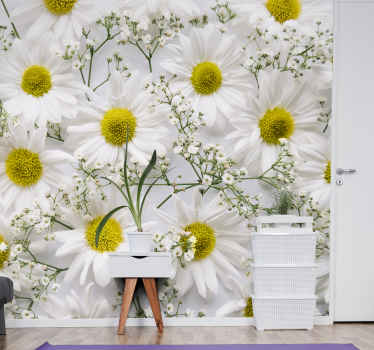 Decorate the walls of your house with this beautiful white Daisy flower design. Add some decoration to your walls  that you can enjoy for a long time.