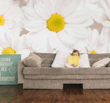 Make a difference on the walls of your home with our pure white daisy flowers photo wallpaper, which shows the beautiful white flowers.