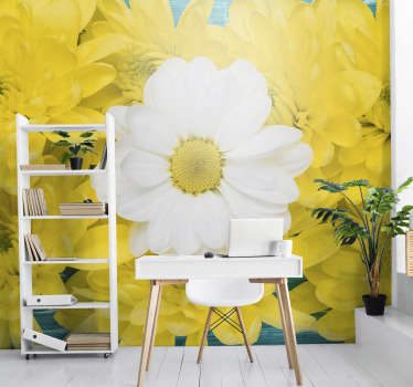 Decorate your home with our beautiful Yellow and white daisy flower photo wallpaper, and add color and cosines to the walls of your home.