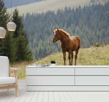 Mooi paard met de bos achtergrond maakt dit landschap fotobehang een perfecte decoratie van uw huis. Gratis bezorging!