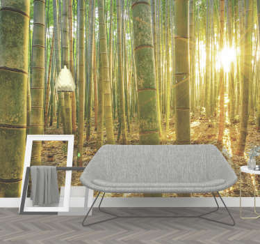 A vast forest of bamboo, basking under the beautiful rising sun. Decorate your home with this stunning bamboo wall mural