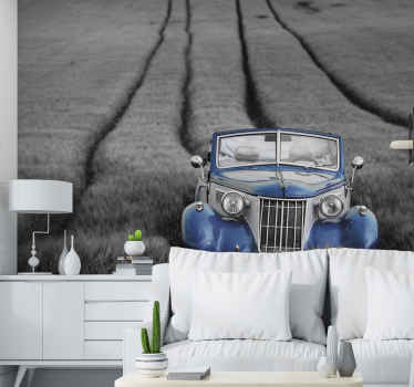 Rusty blue car black and white wall mural Car. Vintage car of electric shade. Highly detailed chassis, pale grass background with driving wheel lines.