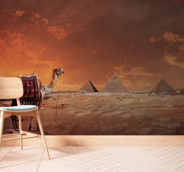 Sunrise over desert with camel wall mural. The desert shows details in the rocks and sand and the sky has a realistic cloud. Came and pyramids