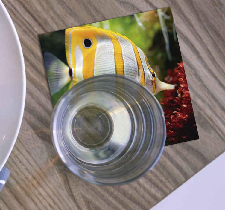 TenStickers. 白色和黄色的鱼过山车. 真棒鱼过山车,有一条黄色和白色的鱼在清澈的水中游泳。容易保持清晰。防水。顶级品质。