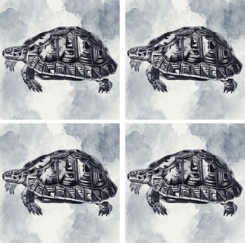 TenStickers. Vintage Turtle Drawing Coaster. Do your tables always get stains because of glasses? This beautiful turtle animal coaster is the perfect solution! Black and white design!