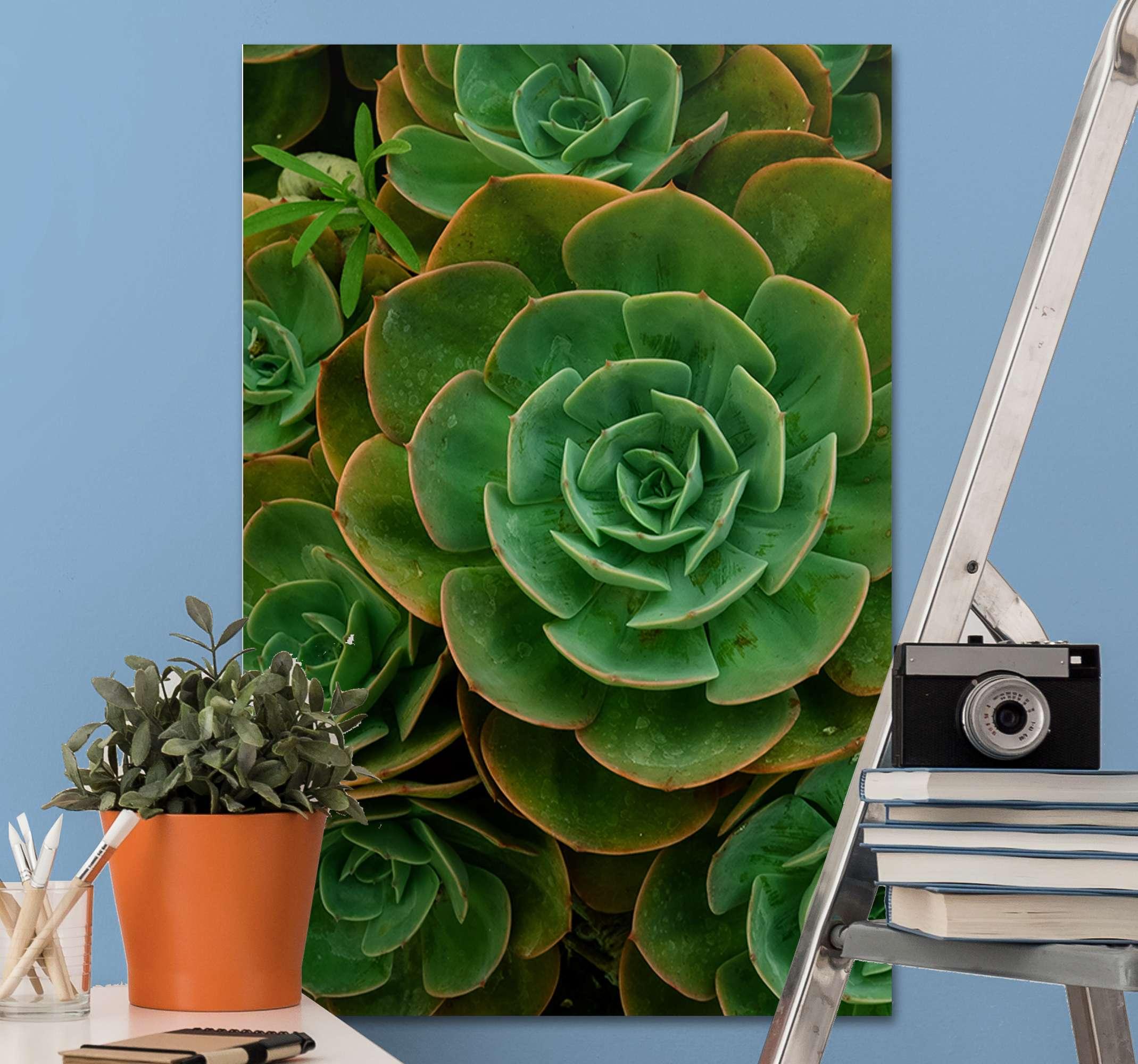 TenVinilo. Cuadro de flores diseño de cactus. Cuadro de flor de cactus de aspecto realista para que decores tu salón o dormitorio de forma original. Elige medidas ¡Envío exprés!
