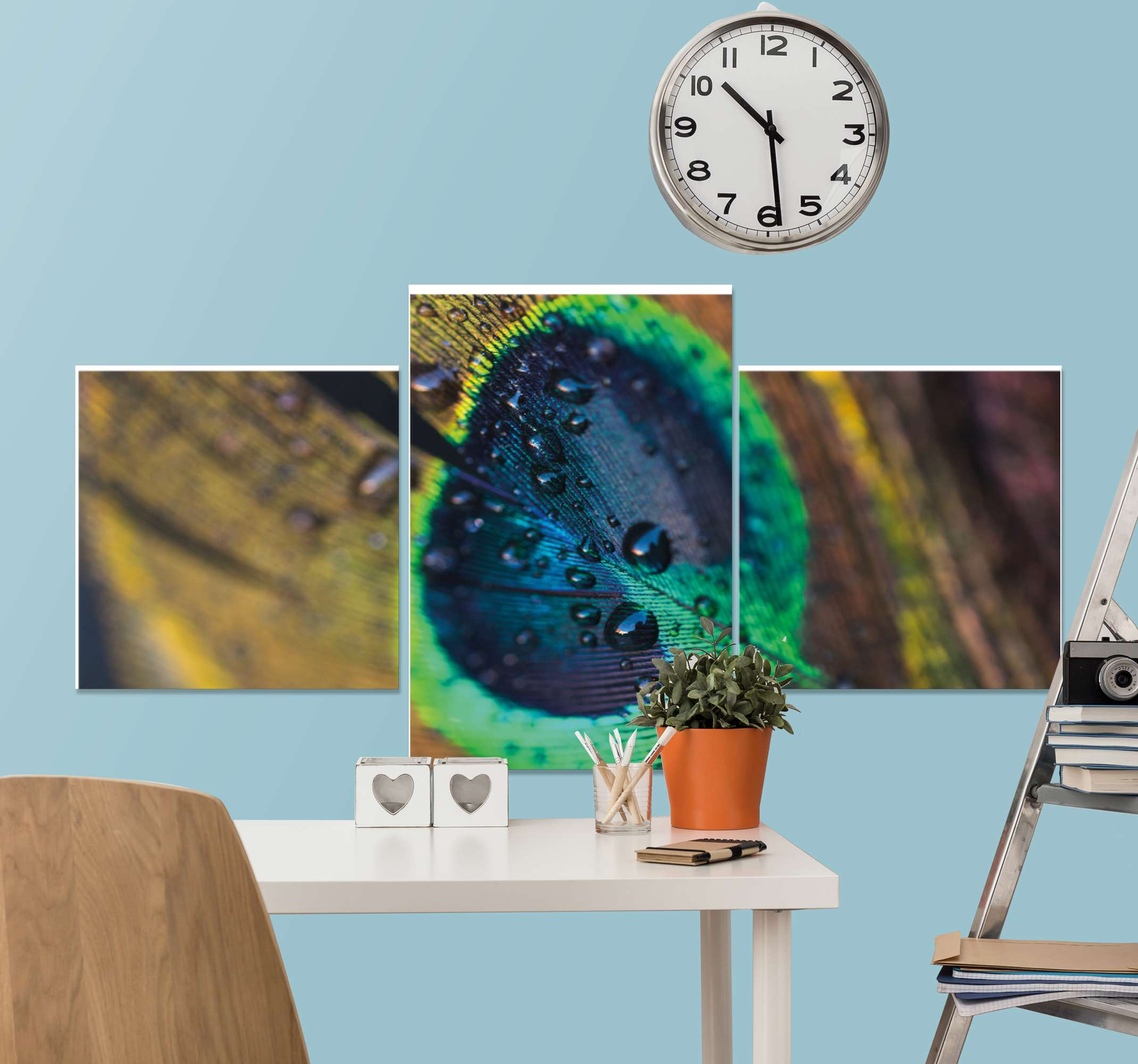 TenStickers. Peacock feather canvas. A wonderful realistic peacock feather canvas wall art that you can adorn your home with! Discounts available when you sing up.