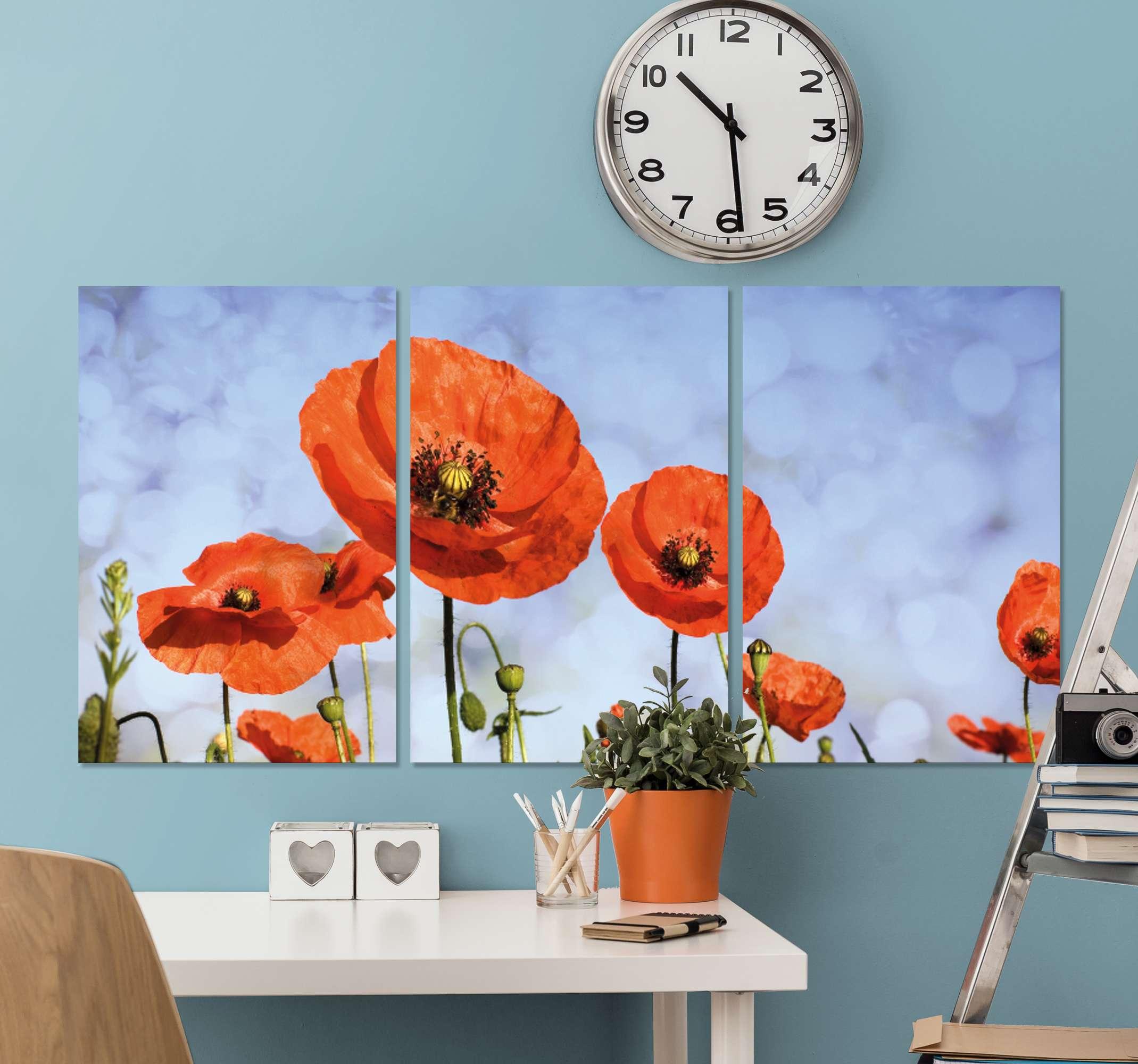 TenStickers. Mákvirág virágvászon. Egy egyszerű, de csodálatos mákvirág vászonkép. Csak alkalmas és illeszkedő nappali és iroda számára. Kiváló minőségű nyomtatással készül.