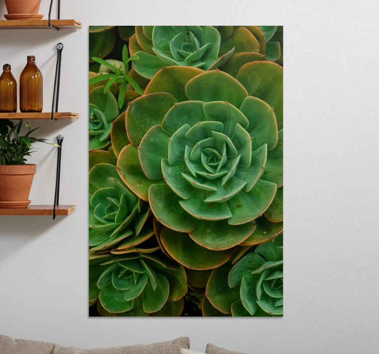 TenStickers. Cactus design plant canvas print. Realistic looking cactus flower canvas wall art. Beautiful canvas for a living room, though you can also hang it on other areas in your home.