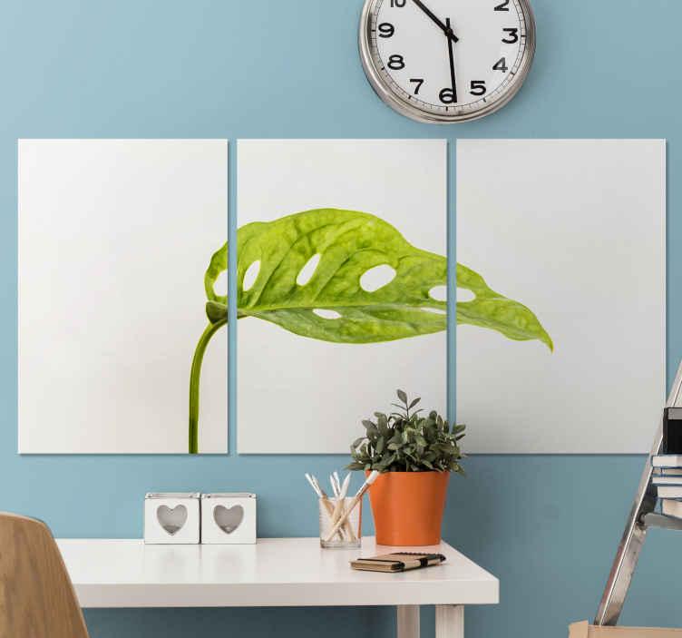 TenStickers. Monstera 잎 식물 벽 인쇄. 몬스 테라 (스위스 치즈) 식물의 잎이 인상적인 몬스 테라 잎 캔버스. 10 % 할인을 신청하십시오.