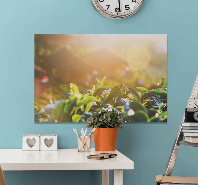 TenStickers. Sunlit Rainforest wall prints. Jungle canvas print which features a stunning image of some jungle leaves up close with the sun in the background.  High quality.