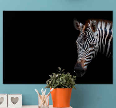 Zebra canvas print which  features a realistic image of a zebra with a black background. Available in various sizes. High quality.