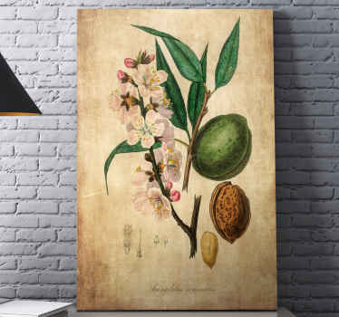 Almond canvas wall art to decorate your home and any other space of your choice. This vintage texture tree canvas art is original and  durable.