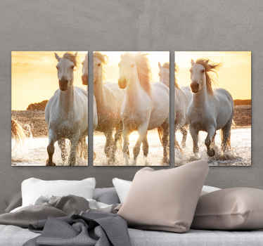 Horse canvas print which features a stunning image of a herd of white horses running through a river in the sunset. Available in various sizes.