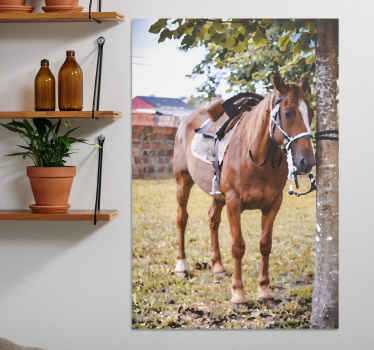 Horse canvas print which features a stunning image of a horse tied to a tree on a farm. Sign up for 10% off. High quality.