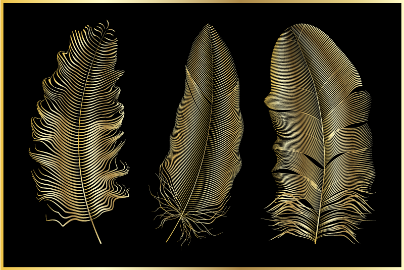 TenStickers. Golden feathers black background canvas print. Give your home some touch of personality with this simple but elegant golden feather on black background canvas print. Easy to maintain.