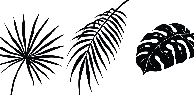 TenStickers. Three Tropical leaves canvas prints. Some amazing leaf wall art canvases to add uniqueness and character to your home. Sign up for 10% off your first order with us.