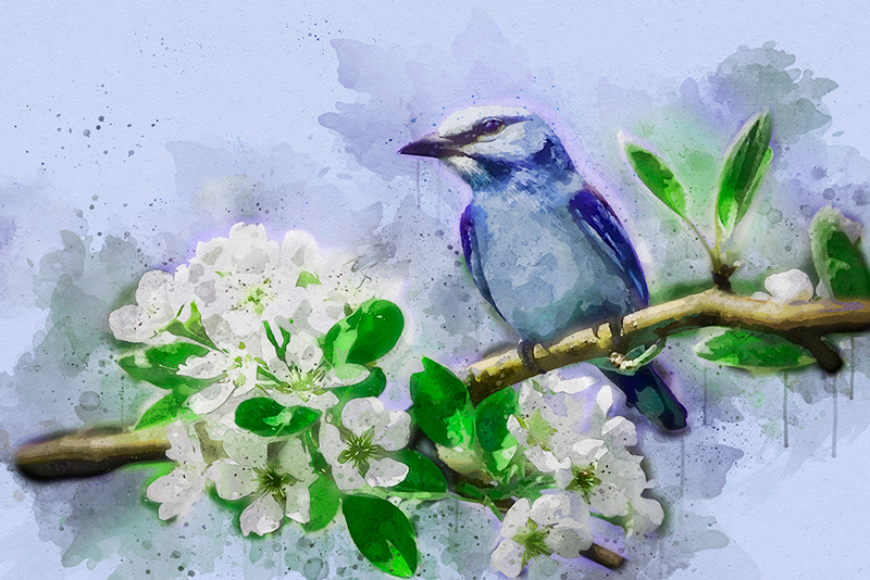 TenStickers. Flowers and Bird Tree canvas print. Bird canvas print which  features a stunning image of a painted bird on a tree branch full of white flowers. Choose your size.