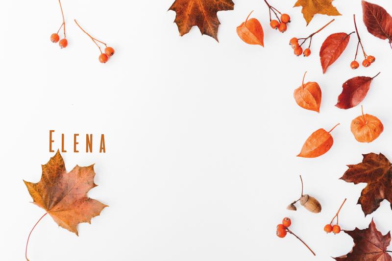TenStickers. Personalizirani stenski odtisi jesenskih listov. Personalizirano rastlinsko platno, ki vsebuje podobo različnih jesenskih listov in jagodičja z možnostjo, da mednje dodate svoje ime.