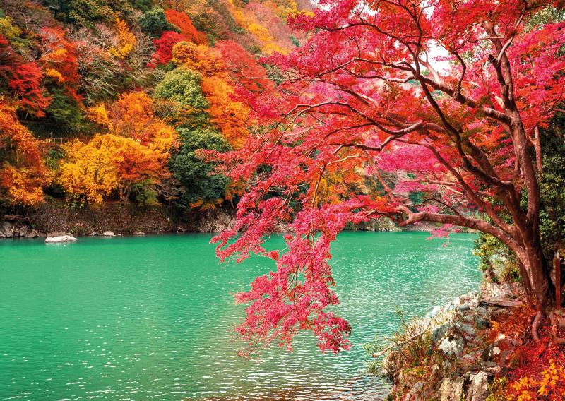 TenStickers. лес вечернее солнце и озеро дерево холст печать. пора создать красивую и красочную природу в вашем доме с этим лесным озером с холстом из дерева. напечатаны с высококачественной отделкой.