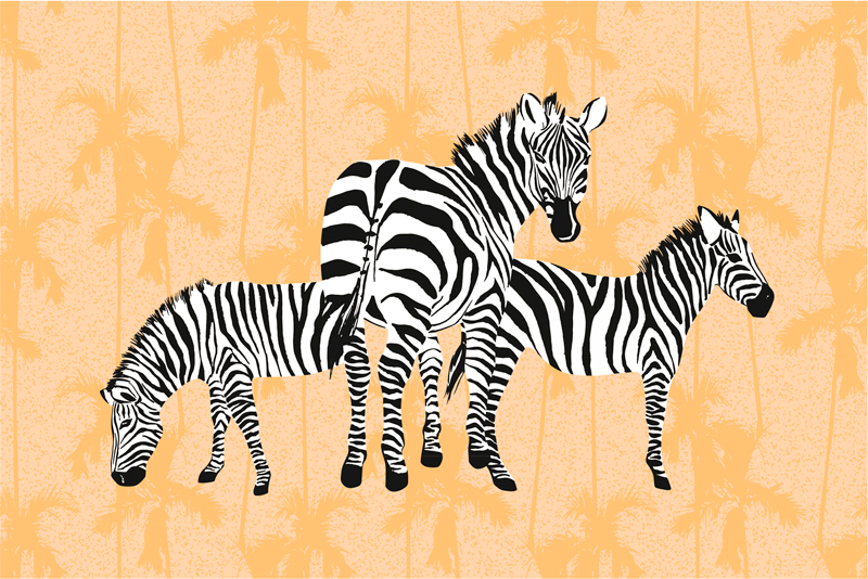 TenStickers. Palms and zebras canvas print. Zebra canvas print which features an image of 3 zebras in various positions with a pattern of orange palm trees behind them.