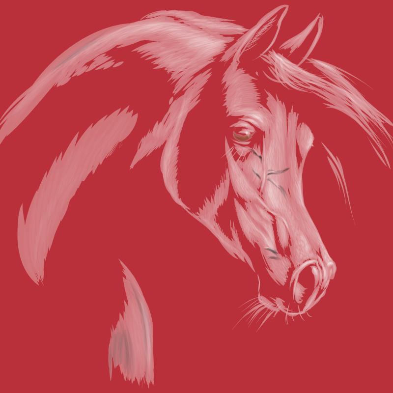 TenStickers. красные тона лошади холст картины. холст с изображением лошади, на котором замечательно изображена лошадь красного цвета на красном фоне. подпишитесь со скидкой 10% прямо сейчас.