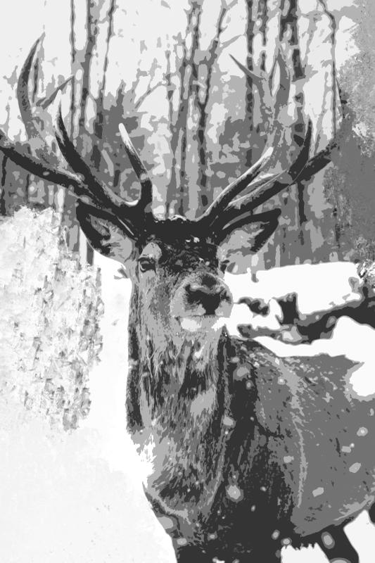 Tenstickers. Grå rådjur spår av måla hjort kanvastryck. Letar du efter en fin djurkonst för att lägga till ett kärleksfullt utseende och uppmärksamhet på ditt utrymme? Det här undrande hjortdjuret i skogsduk är bara perfekt.