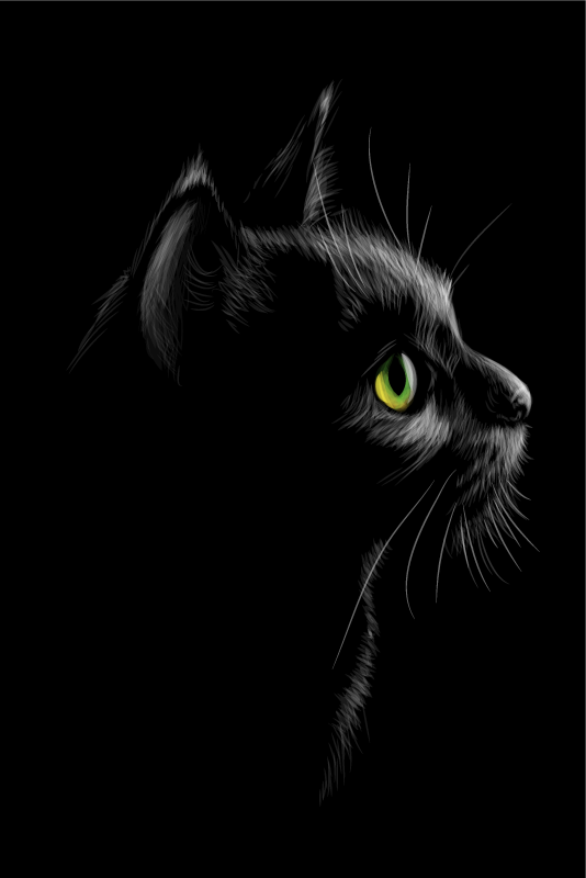 TenStickers. Black cat wall art canvas. Cat canvas print which features a striking image of a black cat with bright green eyes looking into the distance. High quality.