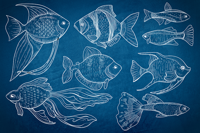 TenStickers. Marine fish Bathroom wall art canvas. Simple bathroom canvas art design representing different marine fishes. The background is made in dark blue depicting deep sea colour.