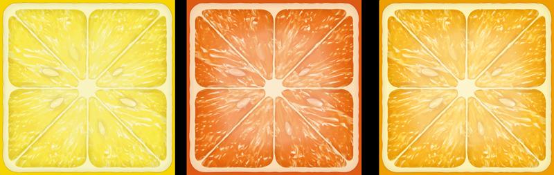 TenStickers. Dipinto frutta e natura morta Trama di agrumi colorati. Tela diversa con illustrazione di agrumi a fette. La tela progettata sembra realistica e ti piacerebbe. Stampato in finitura di qualità.
