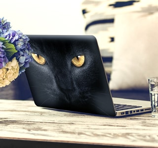 Naklejki na laptopy
