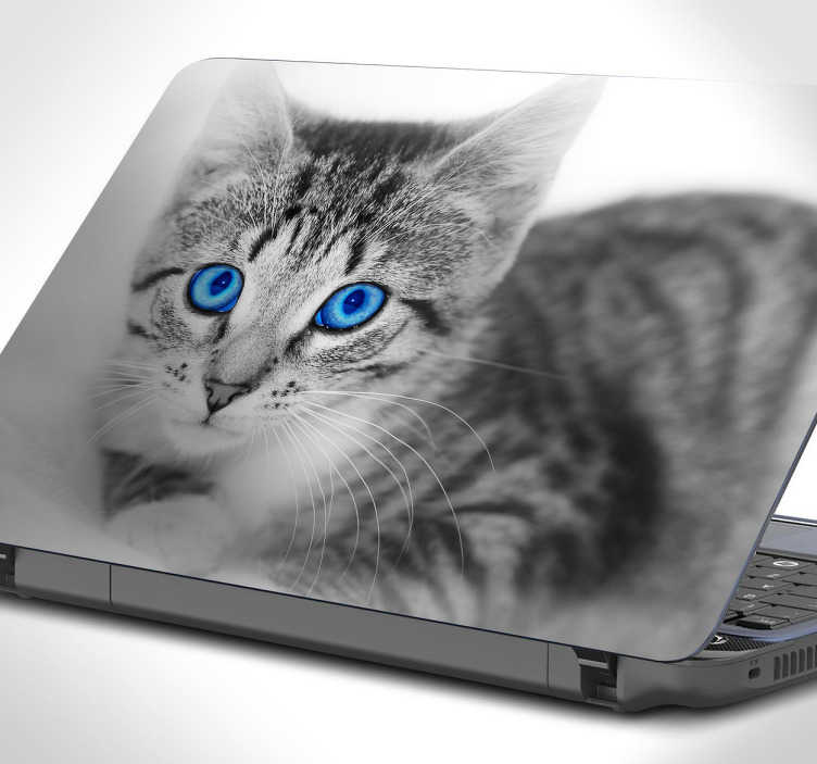 TenStickers. Laptop sticker kat blauwe ogen. Decoreer je laptop met dit lieve pluizige beestje met heldere blauwe ogen. Deze sticker bestaat uit een liggende kat die naar je kijkt met mooie heldere blauw ogen.