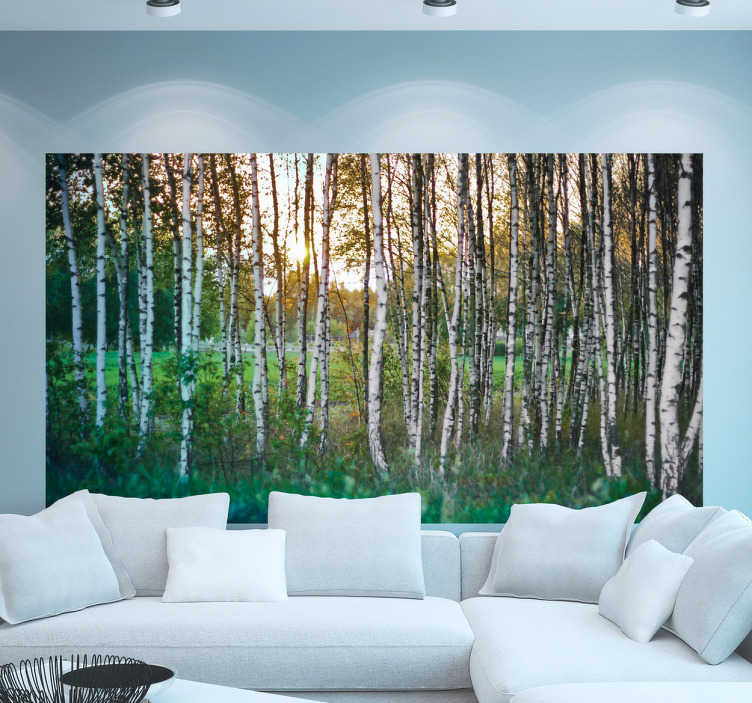 TenStickers. Birch forest wall mural decal. Birch forest wall mural decal to decorate the home space in a magnificence touch. It size is customisable to fit any space.