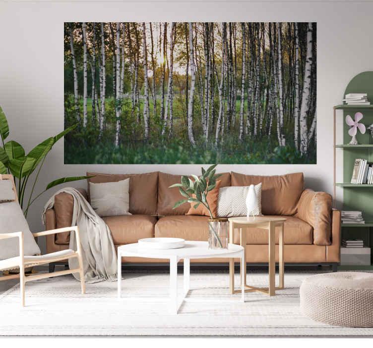 TenStickers. Adesivo fotomurale con alberi di betulle. Fotomurale adesivo da applicare come sfondo al tuo soggiorno per creare un ambiente di pace e tranquillitá