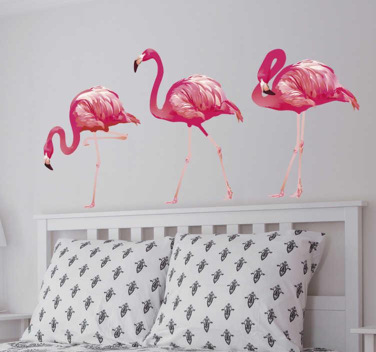 TenStickers. Stickers oiseaux flamants réalistes. Autocollant oiseau représentant 3 flamants roses dans différentes positions. Un sticker réaliste qui transformera la décoration de votre intérieur! Parfait pour les fans de décoration exotique et colorée!