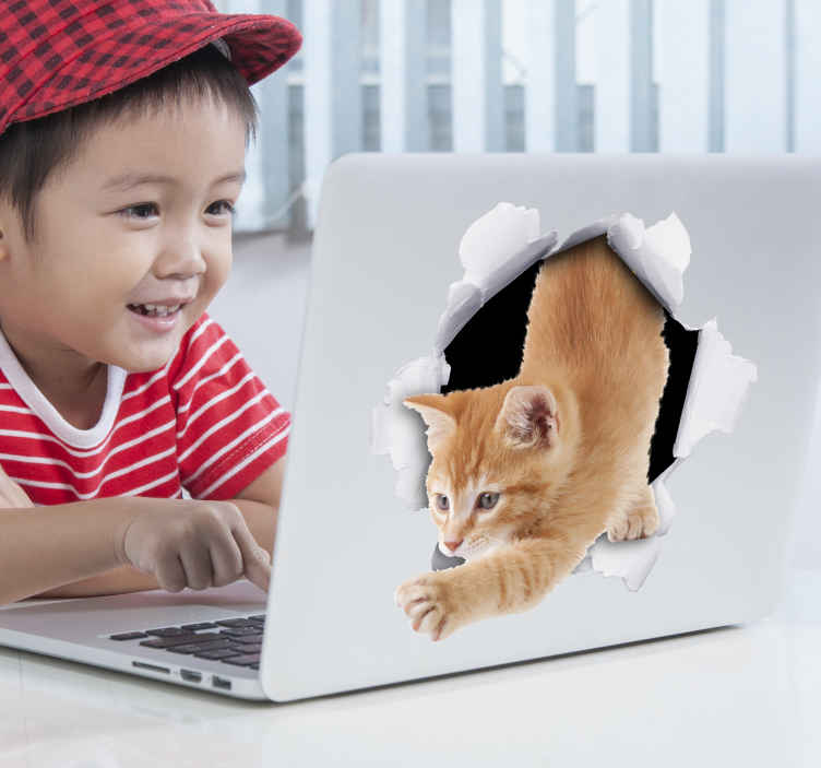 TenStickers. Kat container sticker decoratie. De container kat sticker bestaat uit een kat die uit een gat in de container naar buiten kruipt. Met deze sticker ben je de container niet meer kwijt.