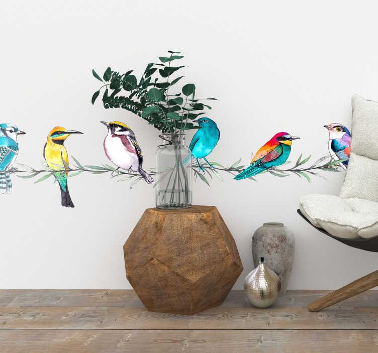 TENSTICKERS. エキゾチックな鳥の国境のステッカー. 活発でカラフルな国境の壁のステッカーは、いくつかのアイビーに座っているエキゾチックな鳥の多くの異なる種を示しています。このデザインでは、明るい黄色、青、緑、オレンジの小さな鳥があなたの家の壁に色や性質を加えています。