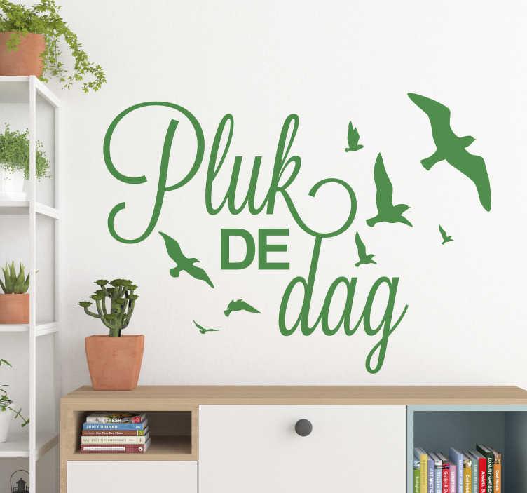 TenStickers. Motivatie sticker pluk de dag. Pluk de dag! Leg deze boodschap vast op de muur in uw slaapkamer of woonkamer. Kleur en afmetingen naar eigen wens aanpasbaar.