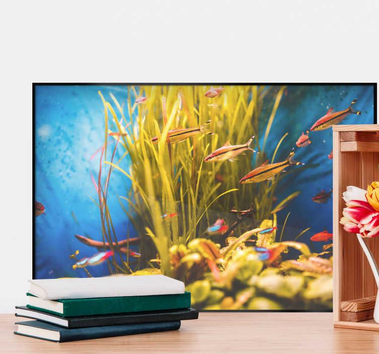 TenVinilo. Vinilo pared acuario marino. Mural decorativo del fondo del mar formado por varios peces de colores ideal para decorar cualquier estancia. Envío Express en 24/48h.
