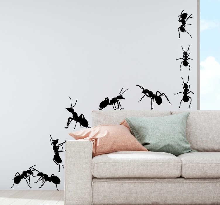 TenVinilo. Vinilo insecto Set de hormigas. Original pegatina adhesiva formada por un patrón de nueve hormigas colocadas en diferentes posiciones. +10.000 Opiniones satisfactorias.