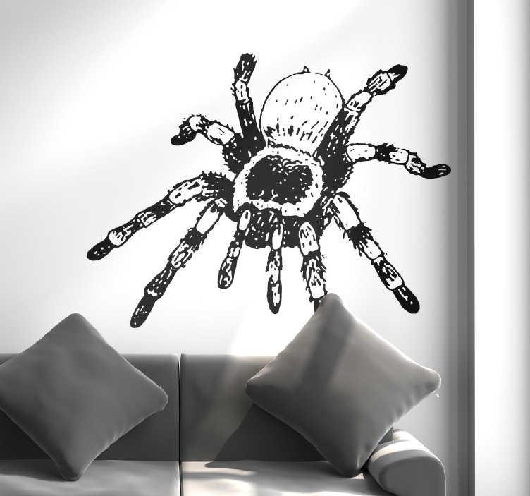 TenStickers. Sticker Maison Dessin Tarantule. Si vous êtes loin d'être arachnophobe, vous aimerez sûrement ce sticker décoratif insecte d'une tarantule en deux couleurs.