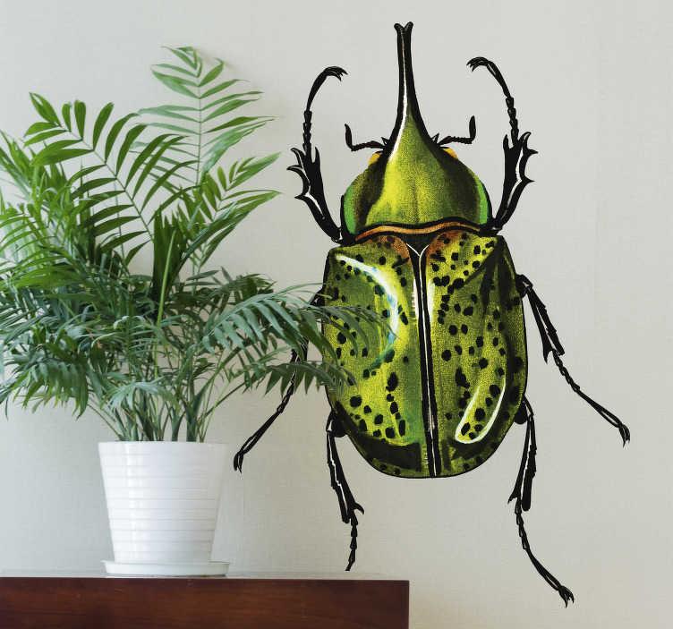 TenStickers. Naklejka z rysunkiem Zielony żuk. Myślisz nad oryginalnymi dekoracjami? Sprawdź nasze naklejki z insektami tak jak ta naklejka z zielonym żuczkiem. Wysyłka w 24/48h!