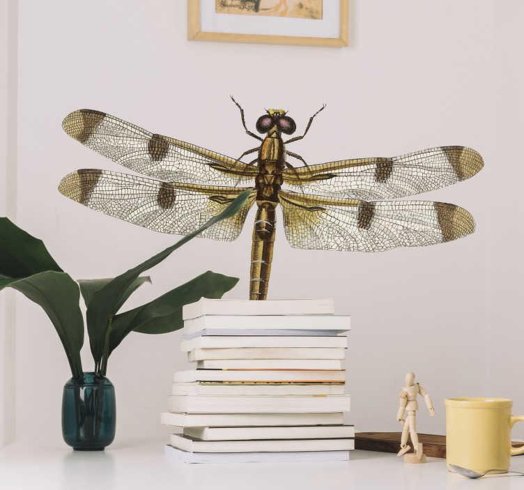 TenStickers. Stickers insecten Groene libelle. Leuke libelle muursticker voor in de woonkamer. Deze libelle sticker is geschikt in alle soorten maten en is ideaal als een woonkamer muursticker.